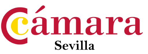 MBA Executive, Cámara Sevilla